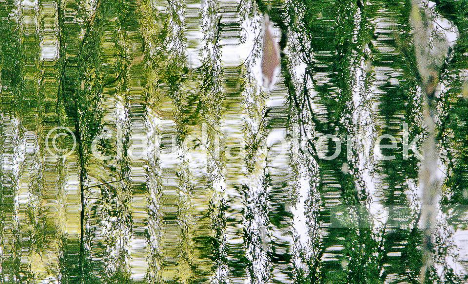 Welle, nachdem der Fisch eine Fliege fing | Größe: 105 x 173 cm | Kodak, lambda print, AluDibond Schattenfuge, gestrichen.