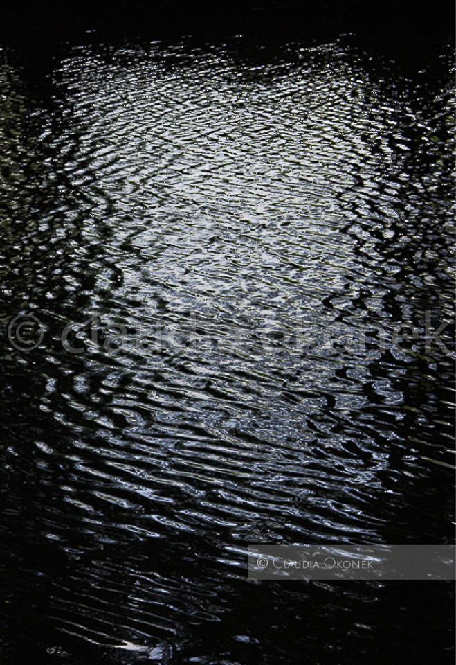 Schwarzer See | Licht fällt zwischen den Bäumen auf das Wasser. |