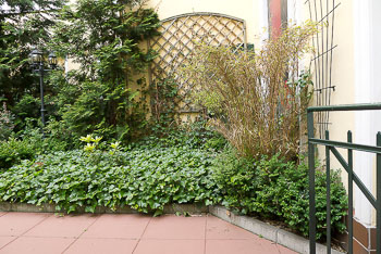 06_Okonek-courtyard2.jpg