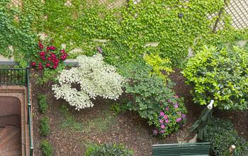 28_Okonek-courtyard2.jpg