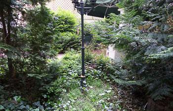 30_Okonek-courtyard2-2.jpg