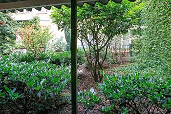 35_Okonek-courtyard2.jpg