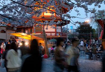 08_08_Ueno_Park_Hanami.jpg
