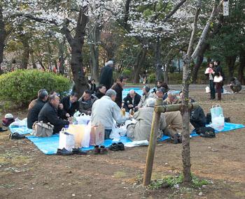 33_18_Ueno_Park_Hanami.jpg